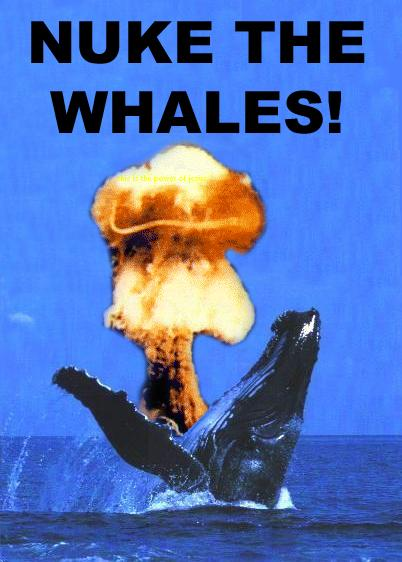 nuke-the-whales