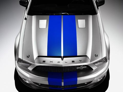 shelbymustanggt50018941