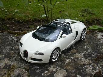 Veyron%20g​ransport%2​01
