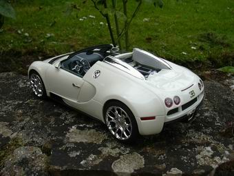 Veyron%20g​ransport%2​02