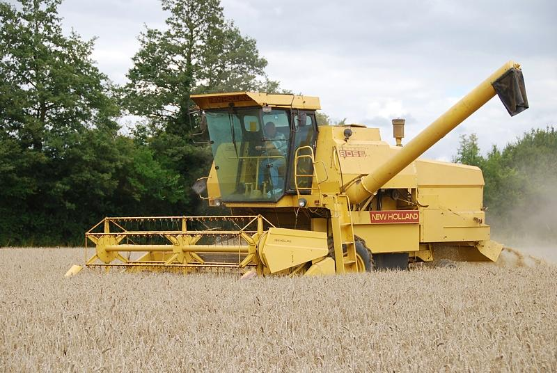 NewHolland80551