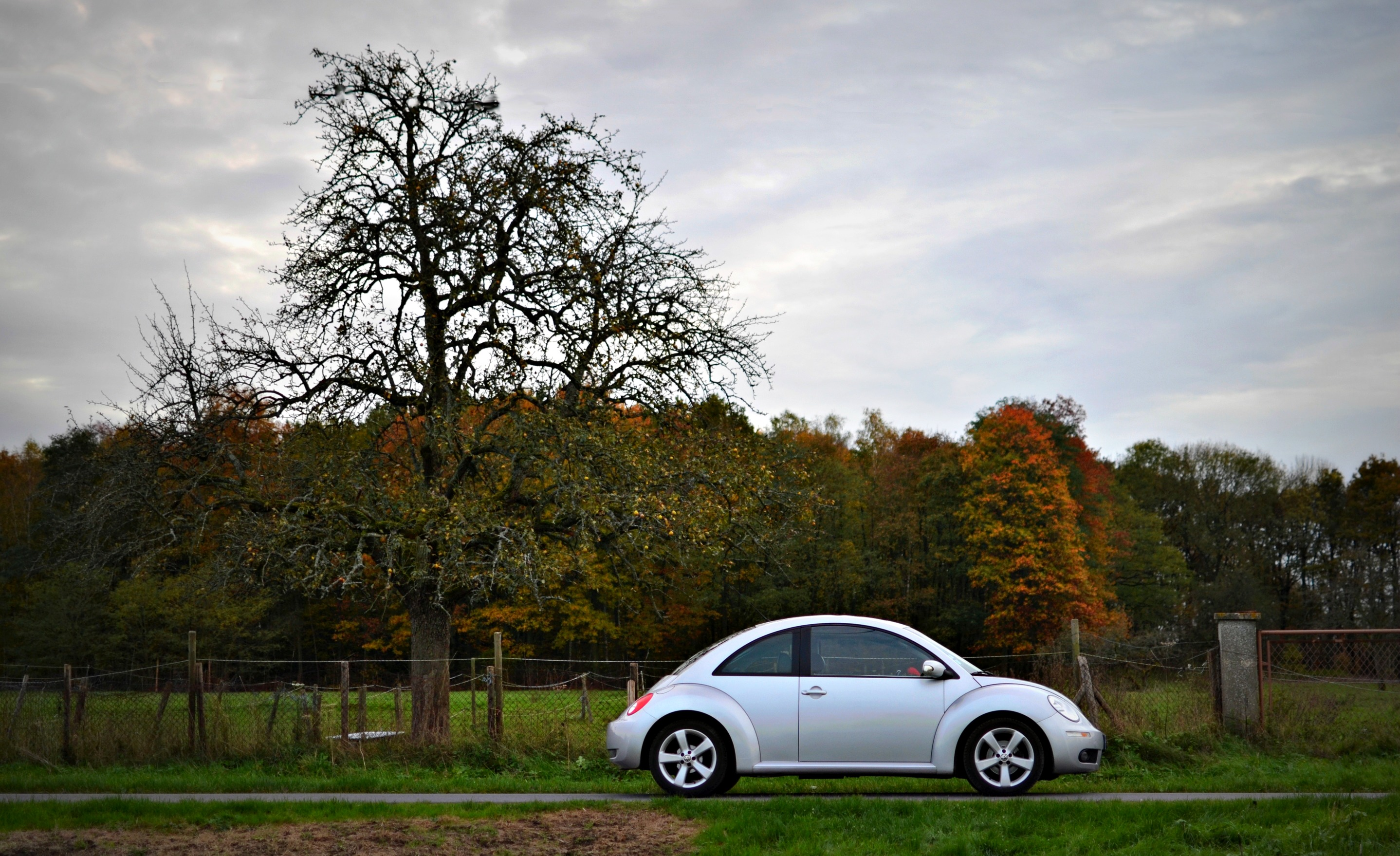 concours-photo-vw-nb-big