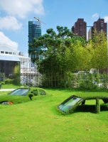 Cars-Swallowed-by-Grass_Taiwan