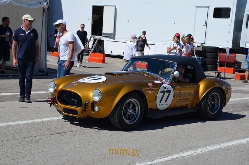 SHELBY Cobra 427 Competition 1965 2
