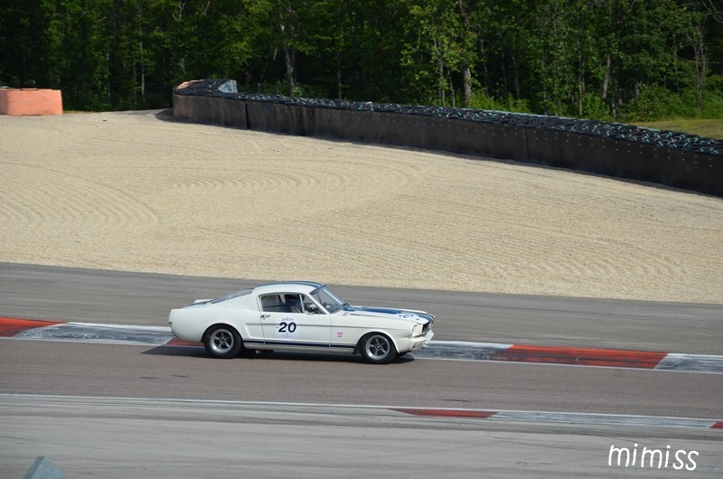 FORD Shelby GT 350 1965 2