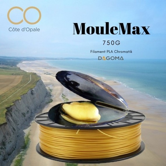 moulemax