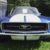 mustang_front