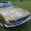 mustang_front1