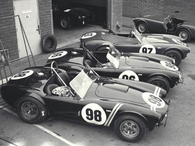 Cobra-289-Shelby-Racing