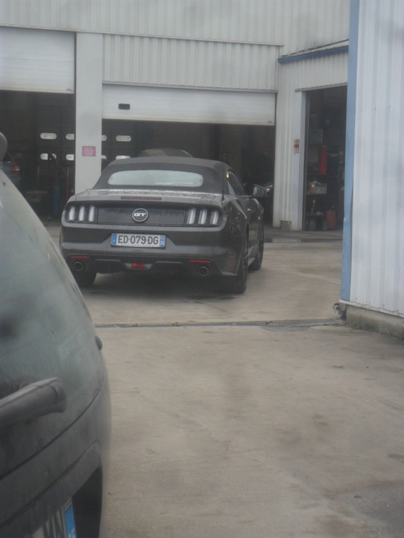 ford mustang (18)