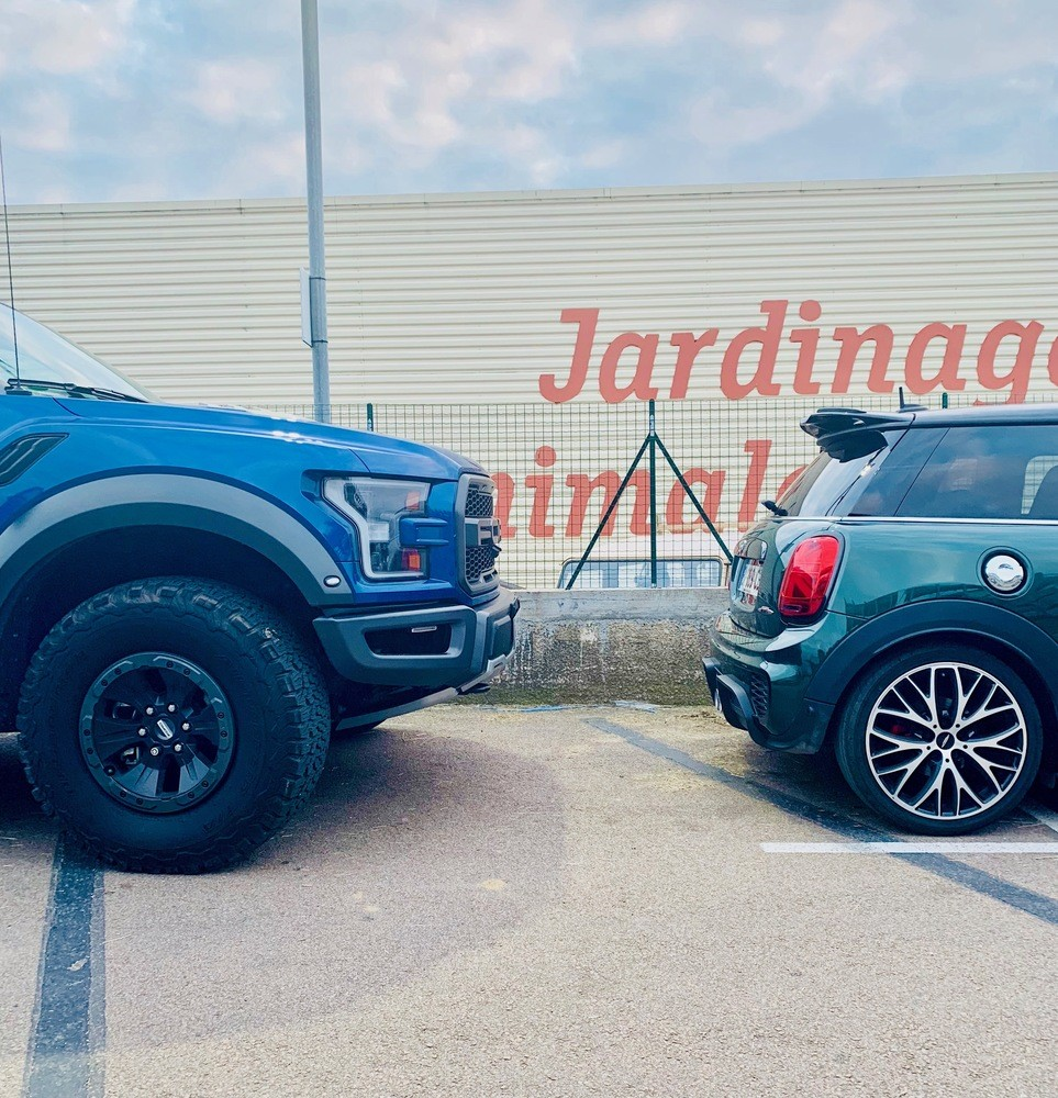 Raptor vs Mini ...
