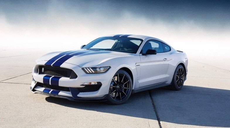 Mustang_Blanche