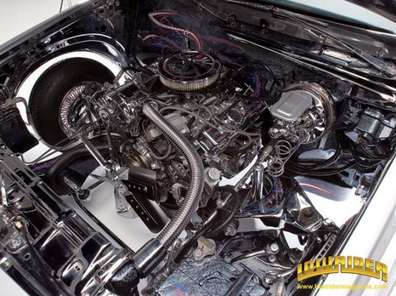0605_03z+1981_buick_regal+engine_view