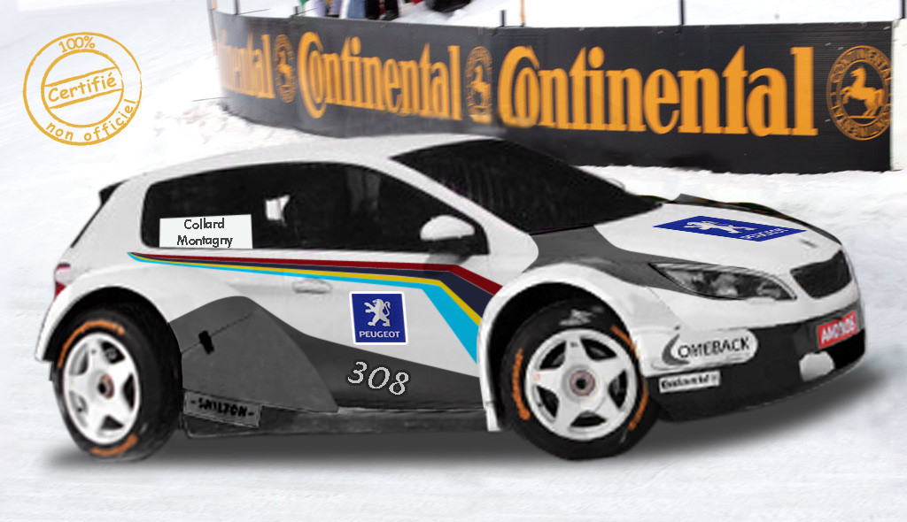 peugeot 308 Andros